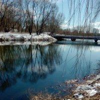 Озеро :: Вероника Озем