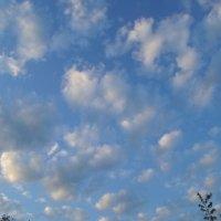 Вечернее небо :: BoxerMak Mak