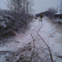 Первый снег :: Александр Павленко