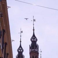 графика Амстердама :: liudmila drake