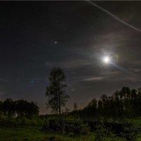 Пейзаж под луной :: cfysx
