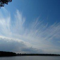 весенние небо :: Alla Swan