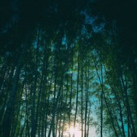 Скоро закат :: Сергей Дубинин