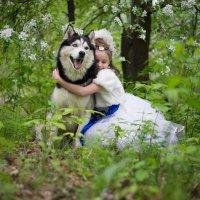 Самый любимый пёс) :: Ольга Осипова