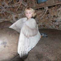 Птенец :: Galina Kazakova