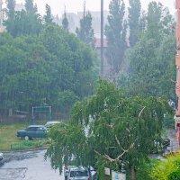 Дождь :: Елена Васильева