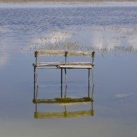 Присесть на воде :: Алексей Климов