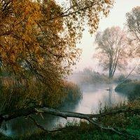 Осень :: Иван Улас