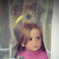 На улице дождь, остаётся только с грустью смотреть в окно.... :: Денис Томилов