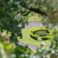 green ring :: Дмитрий Карышев
