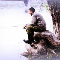 рыбак :: Елена Баландина
