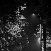 Ночь, улица, фонарь :: Aleksey Donskov