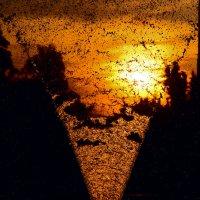 На закате :: Kirill Osin