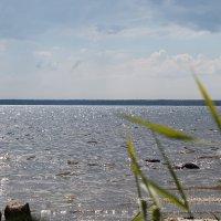 Балтика... :: navalon M