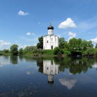 Церковь Покрова на Нерли :: галина северинова