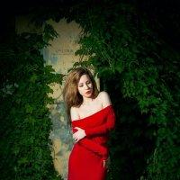The Lady In Red 4 :: Сергей Пилтник