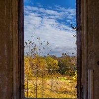 Отрада графа Орлова. Вид из окна дворца :: Наталья Rosenwasser