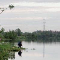 Рыбные места :: Сергей Яценко