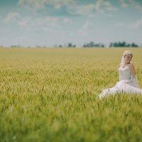 Невеста в поле :: Сергей Урюпин