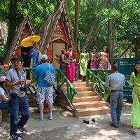 Парк Пренн в Далате.Вьетнам. :: Татьяна Калинкина