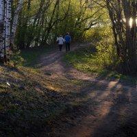 Прогулка в парке :: Ирина Зайцева
