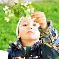 Мальчик в мае (5) :: Полина Потапова