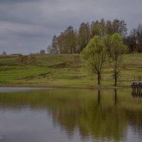 В дымке зелени :: Владимир Макаров