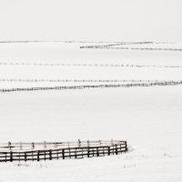 Геометрия зимы. :: Slava Sh