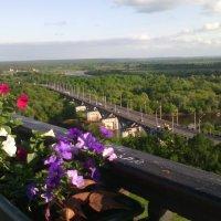 Мост через Клязьму :: Галина
