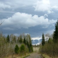 Лесная дорога 3 :: aksakal88