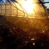 солнце-проявитель грязных стекол :: Александр Прокудин