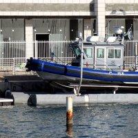 Полицейский катер в яхтклубе :: Герович Лилия