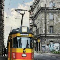 Белградский трамвай :: Tatiana Belyatskaya