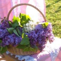 В моём саду... :: Mariya laimite