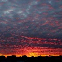 19.05.16 :: navalon M