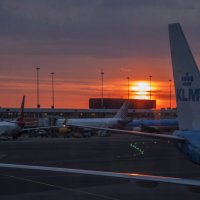 утро в порту :: liudmila drake