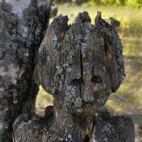Лесной дух :: Людвикас Масюлис