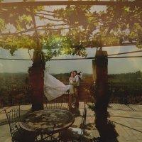 свадебное :: vladimir Umrihin
