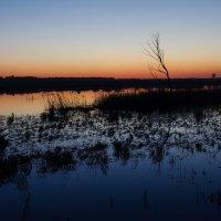 Река Синара :: Вадим Кудинов