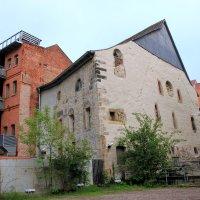 синагога :: Olga