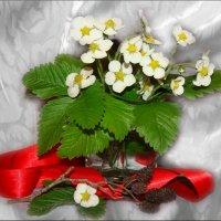 Это только цветочки,ягодки-потом :: °•●Елена●•° Аникина♀