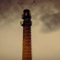 Башня :: Дмитрий Новиков