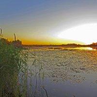закат на озере :: Людмила Василькова