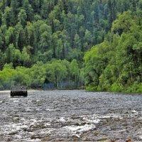В тайге одна дорога - по берегу реки :: Сергей Чиняев