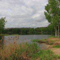 Озера подмосковья. :: Victor Klyuchev
