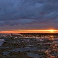 Отлив на закате :: Елена Третьякова