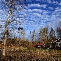 майским утром в Стенсунде :: liudmila drake