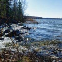 Истоки маленького водопада... :: Светлана Игнатьева