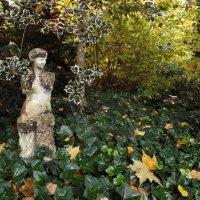 Заброшенный замковый парк.. :: Эдвард Фогель