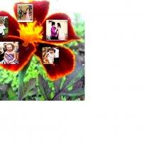Цветик пяти-цветик :: Лебедев Виктор